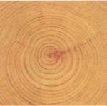 檜4寸角在来工法
