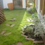 ルーフソイルを利用した屋上緑化